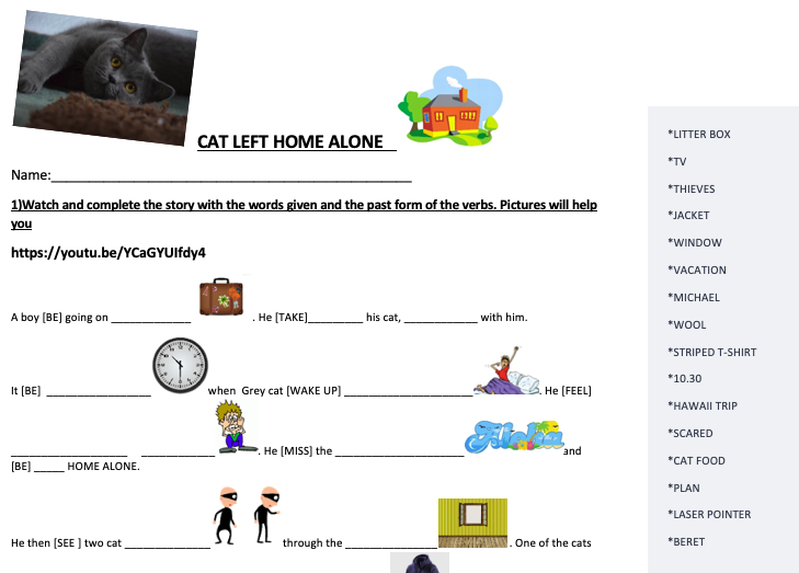 Cat Left Home Alone Video Worksheet
